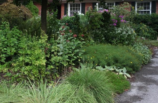 Living Gardens LLC - Visit My Garden